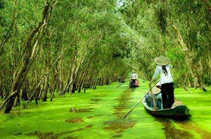 Du lịch hè Châu Đốc - Trà Sư - Hà Tiên - Quần đảo Bà Lụa