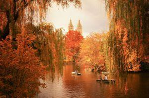 'Em có nghe mùa thu' ở New York