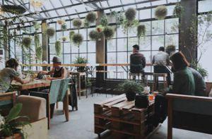 Những quán cà phê lạc giữa khu vườn
