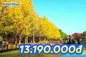 Du lịch Hàn Quốc mùa thu cùng Intertour