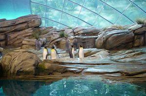 10 vườn thú đẹp và lớn nhất thế giới