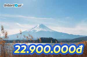Tour Nhật mùa thu, ưu đãi khủng, hồ sơ đơn giản
