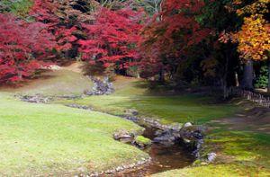 Lạc giữa ngôi làng thần tiên ở Nhật Bản