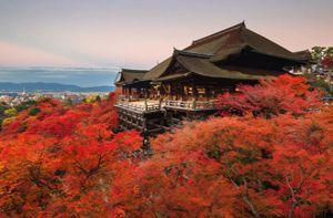 Chiêm ngưỡng những tuyệt tác đền, chùa ở Nhật Bản