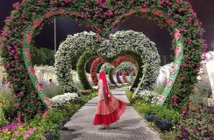 Không thể rời mắt khỏi 7 con đường hoa lãng mạn nhất hành tinh