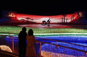 Choáng ngợp trước vẻ huyền ảo của lễ hội ánh sáng ở Nhật