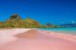 Những bãi biển màu hồng đẹp như mơ khắp thế giới