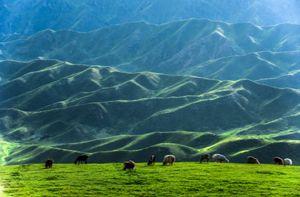 Thiên nhiên đẹp như tranh vẽ ở vùng Tân Cương