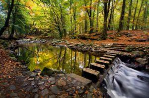 12 địa danh đẹp hoàn hảo ở Ireland