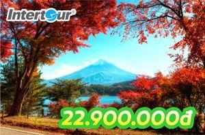 Tour Nhật Bản mùa thu quyến rũ, giá tốt